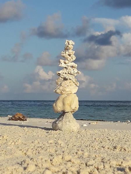 Lebenssteine Malediven Koralle 4