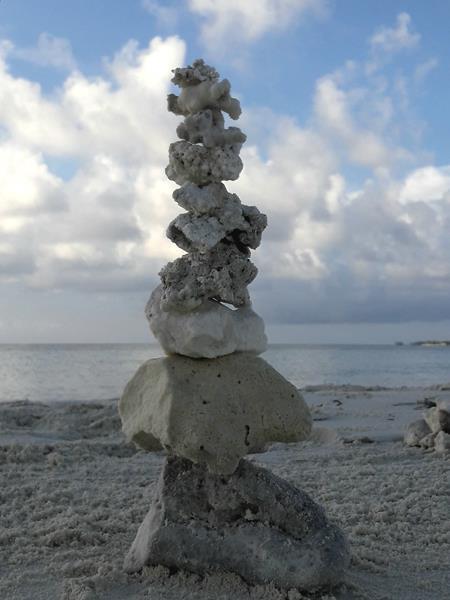 Lebenssteine Malediven Koralle 5