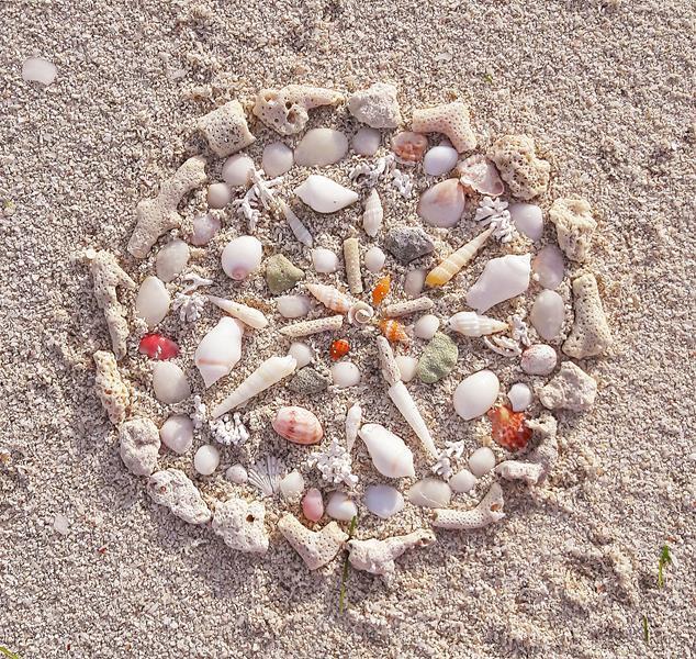kleine-Muscheln-Mandala